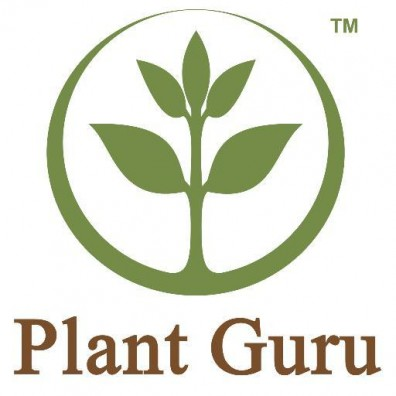 Pure Essential Oils - Plant Guru